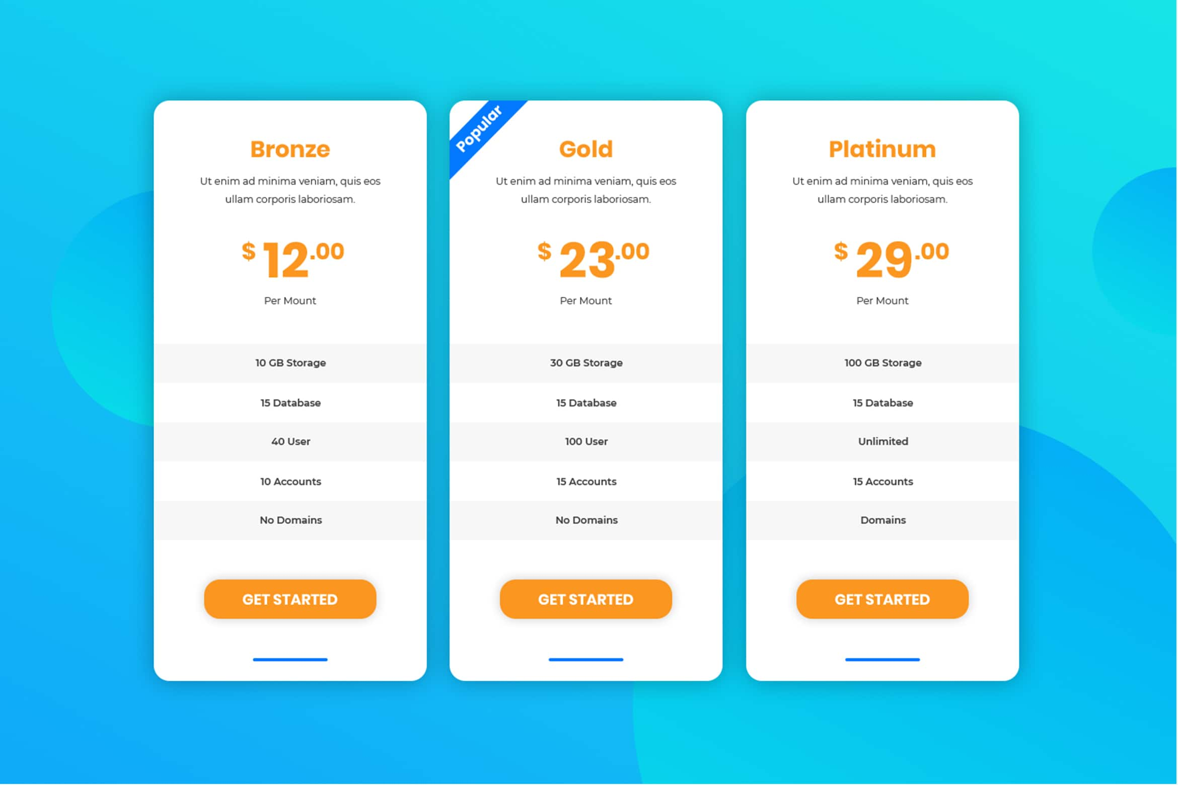 Pricing Table - Package Options