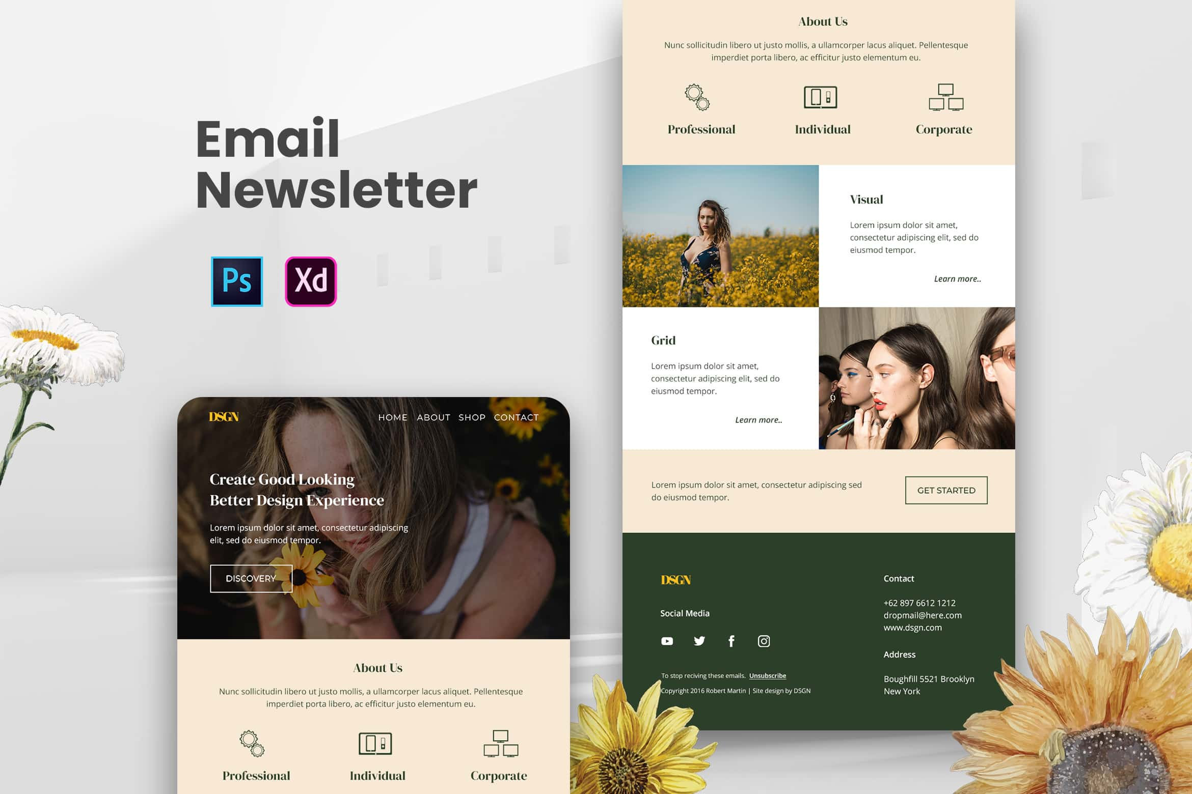Professional Email Newsletter
