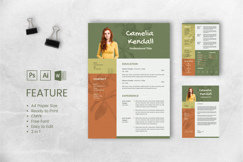 CV Resume – Professional Title 4