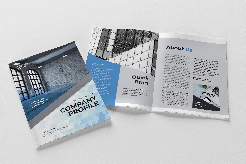 Company Profile - Professional Companies