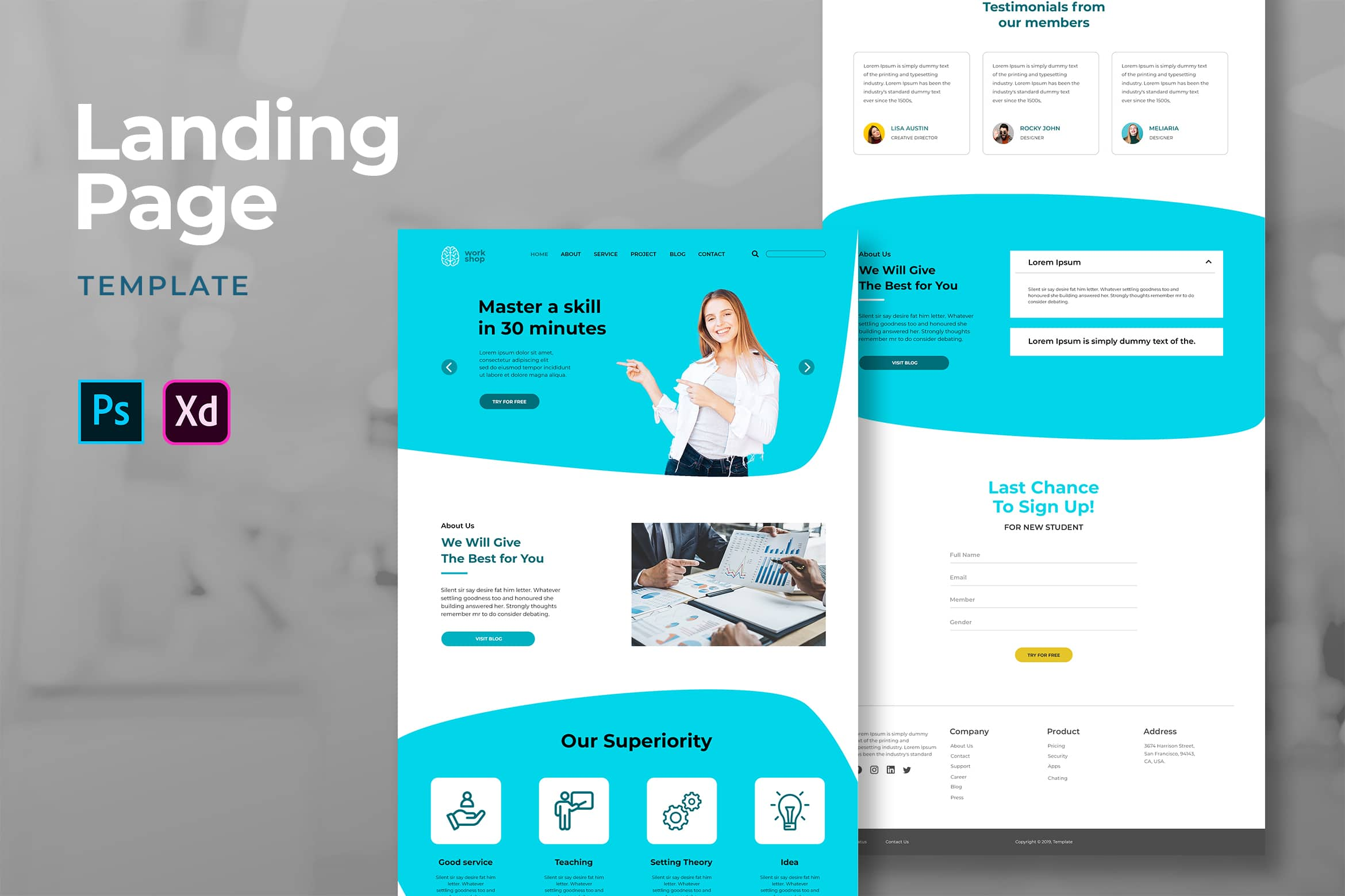 Landing Pages - Professional Teacher Services