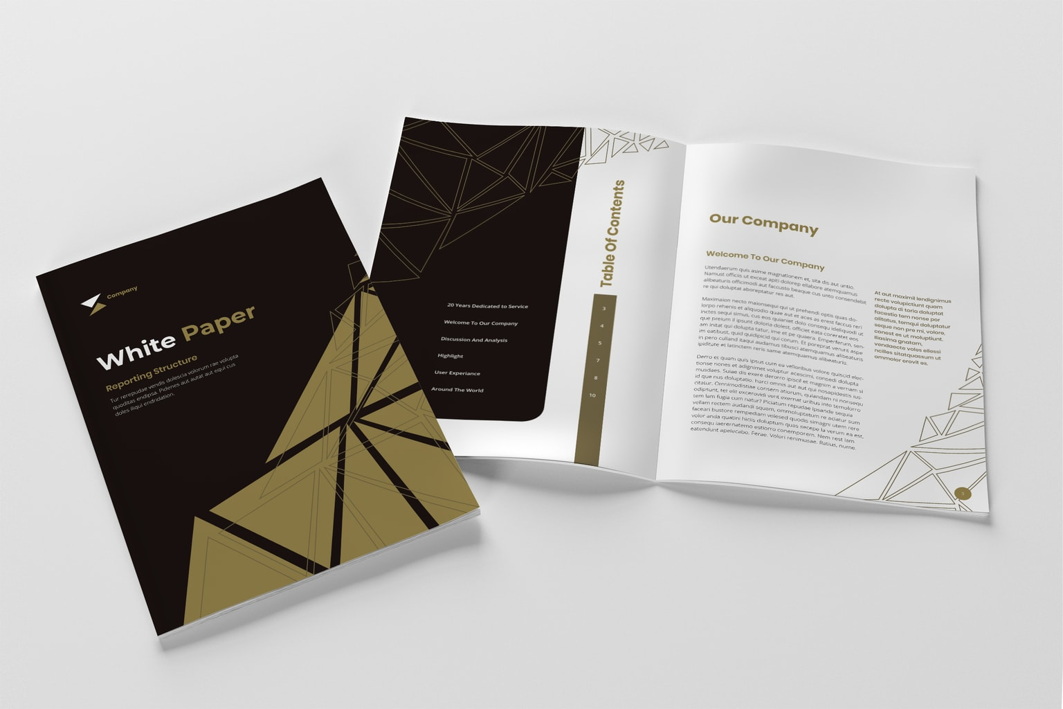 White Paper - Company Annual Report