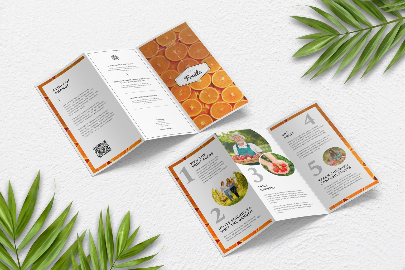 trifold brochure fruits garden