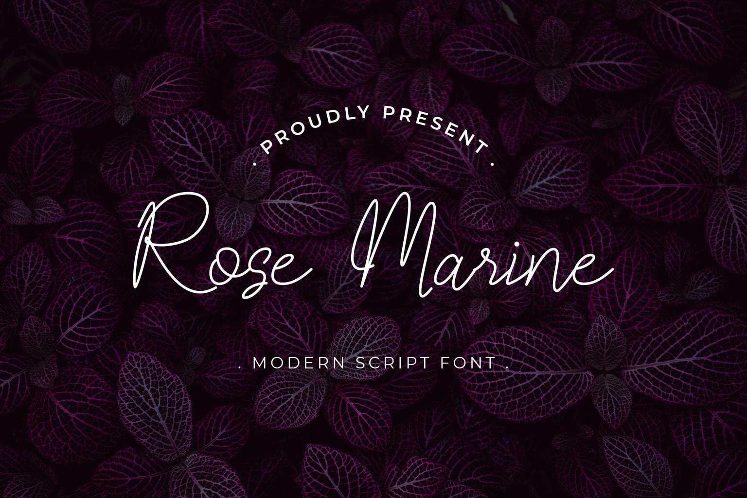 fonts rose marine modern script